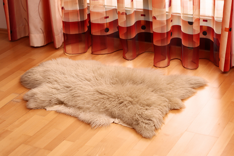 Sheepskin Cleaning Specialist in Colorado